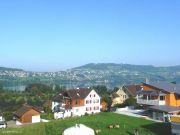 Terrassenhaus Aesch